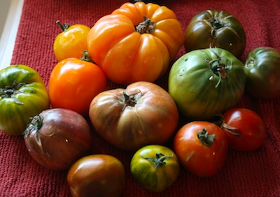heirloom tomatos, tomato soup, chicken broth
